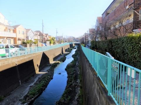 月見橋下流の神田川