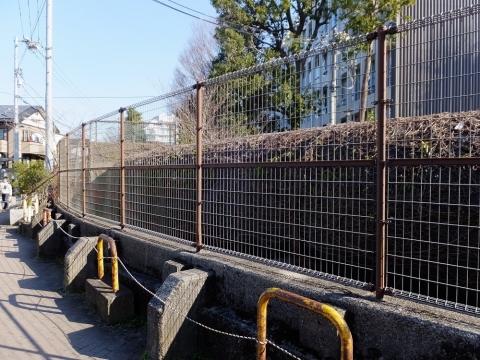 玉川上水公園の大口径水管橋