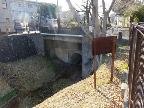 玉川上水・稲荷橋で開渠復活