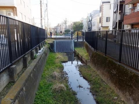 玉川上水旧水路・笹塚橋
