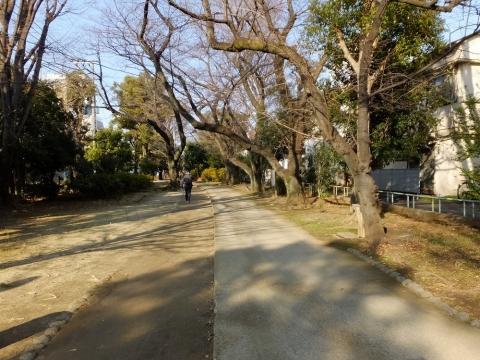 渋谷区立玉川上水旧水路緑道