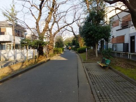 渋谷区立玉川上水旧水路緑道・渋谷区西原