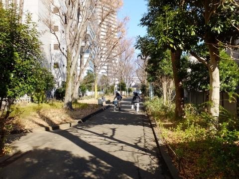 玉川上水旧水路緑道・渋谷区代々木