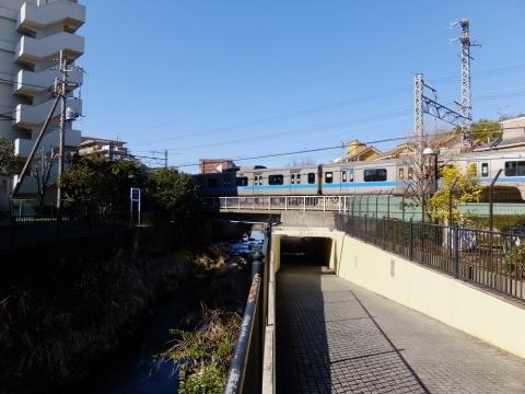 小田急線を潜る真光寺川