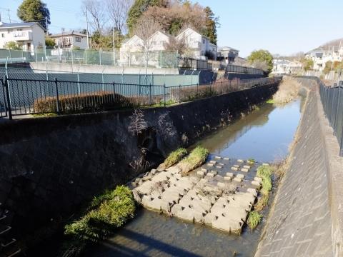 真光寺川下田橋前・雨水調整池