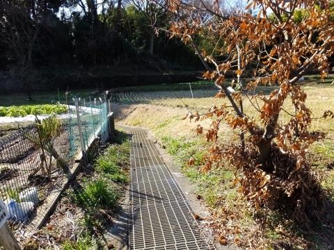 真光寺川取水の用水路・町田市広袴町