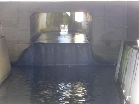 真光寺川・神明橋