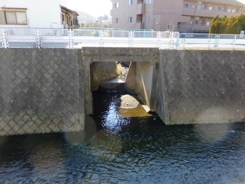 麻生川に合流する真光寺川旧河道