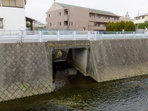 真光寺川旧河道が麻生川に合流