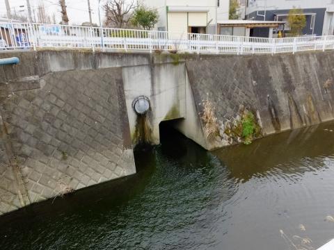 麻生水処理センター処理水の放流口