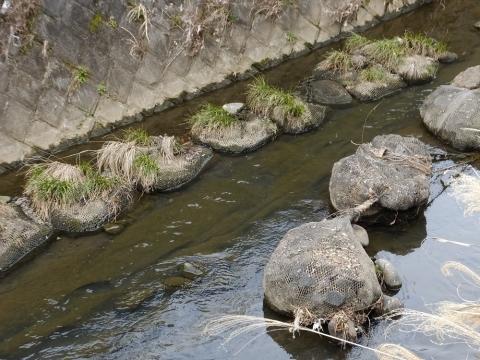 麻生川の袋詰玉石工