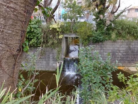 麻生川に合流する清流