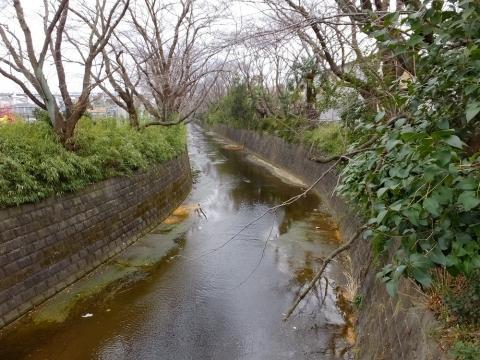 共和橋より麻生川下流を望む