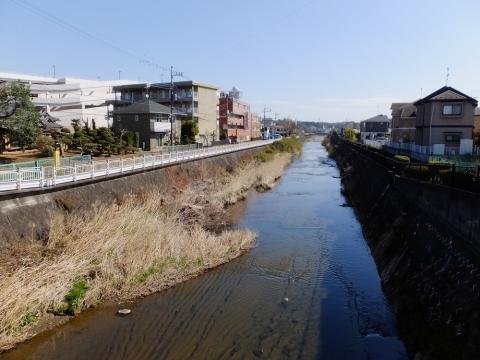 四ツ木橋より鶴見川下流を望む