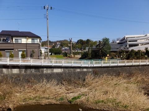 鶴見川旧河道・四ツ木橋付近
