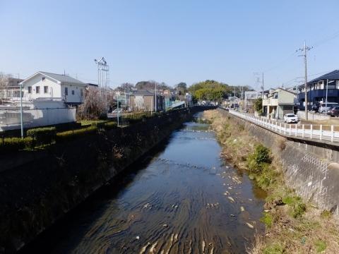 四ツ木橋より鶴見川上流を望む