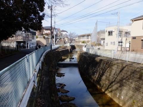 河口付近の片平川