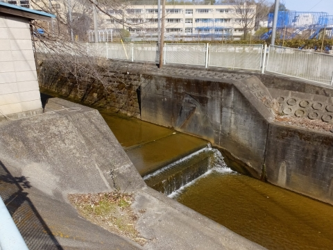 片平川・天神橋上流の取水堰