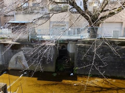 片平川の取水堰・天神橋上流