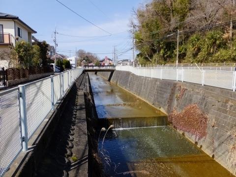 片平川・川崎市麻生区片平4