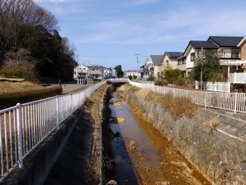 フロンターレ橋より片平川上流の眺め