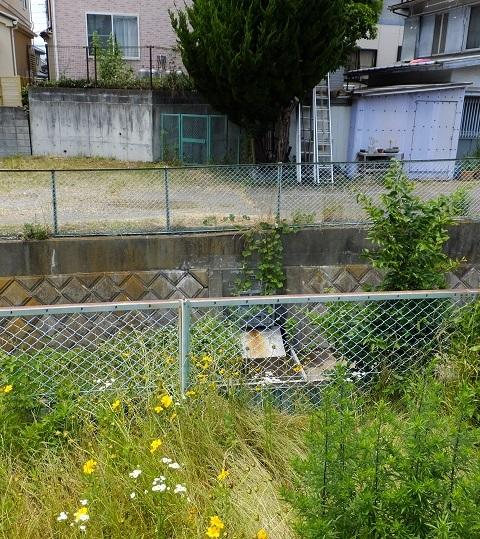 新戸用水暗渠水路吐口