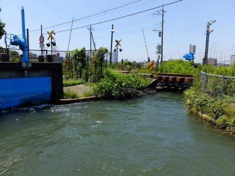 相模川左岸幹線用水路・榎戸制水門