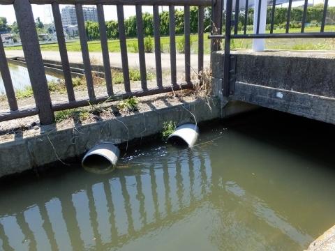 榎戸支線用水路から小水路に分水