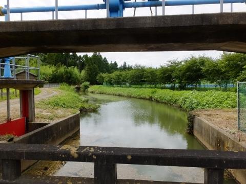 真亀川の取水堰