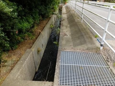 東金円筒分水工付近の用水路