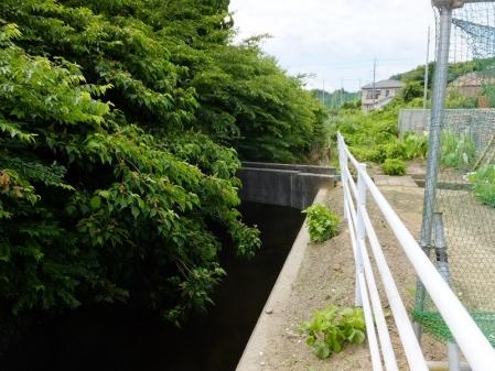 東金円筒分水工で分水した支線用水路