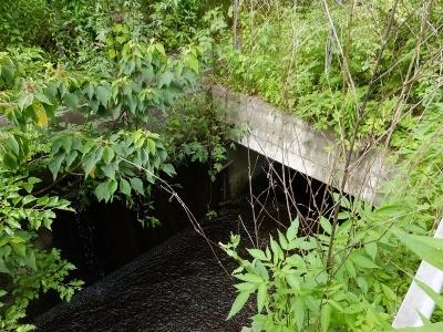 東金円筒分水工で分水した用水路