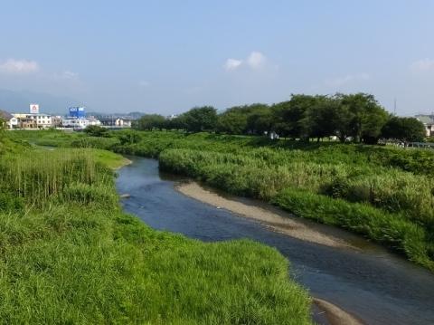 林妻橋より小鮎川上流を望む