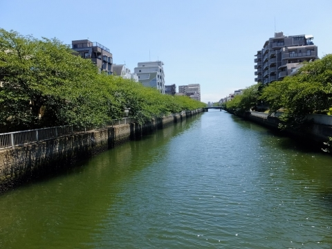 大横川・菊川駅付近菊川橋より南方向を望む
