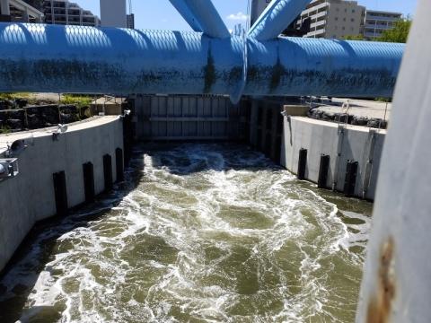 扇橋閘門後扉から排水中