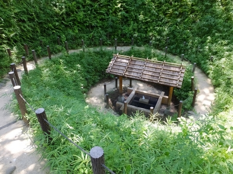 五ノ神社のまいまいず井戸