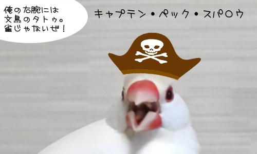 枝豆 & イロイロ_5