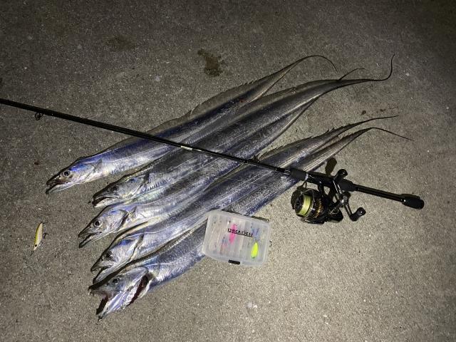 20191227003_太刀魚