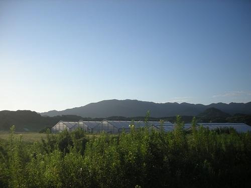 DSCN60911.jpg
