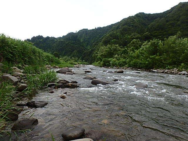 朝から昼まで釜川10