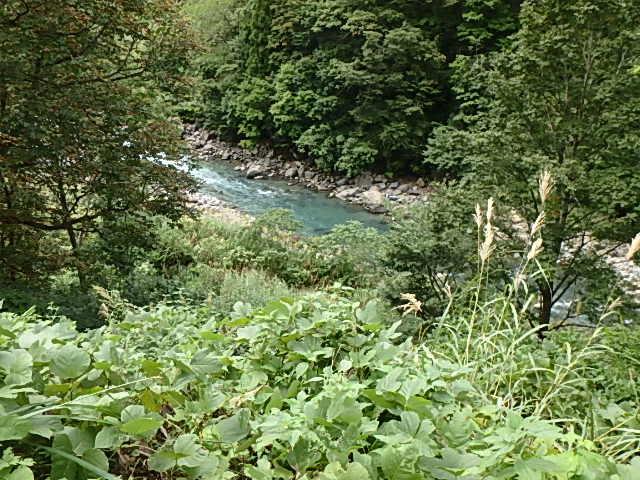 初の中津川1