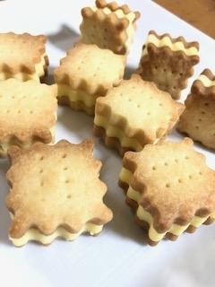 クッキーサンドチーズケーキ