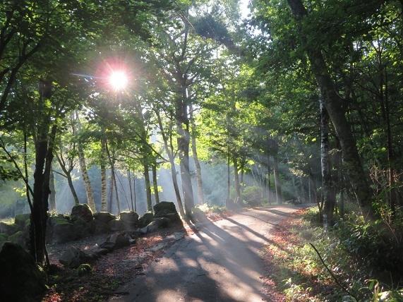 3K01 朝6時半のお散歩 0810
