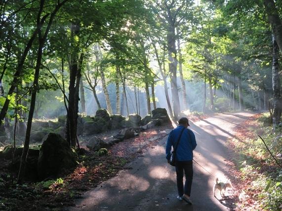 5K03 朝のお散歩 0810