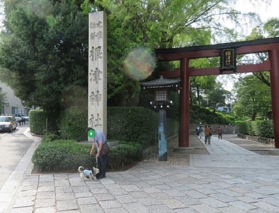 1C01S 根津神社 1003