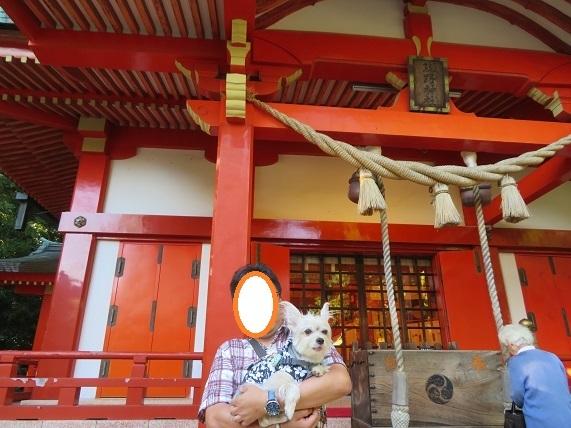 4C04S 熊野神社 1013