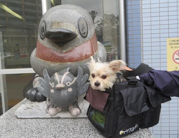 3A03 三郷中央駅 1027