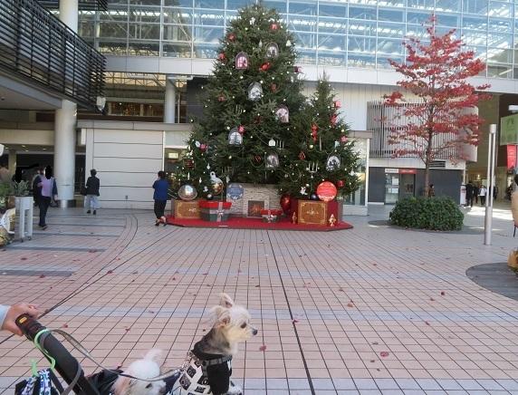 10A14S クリスマスツリー 1112