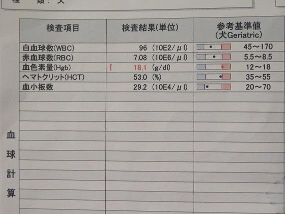 6C06 血液検査 1216