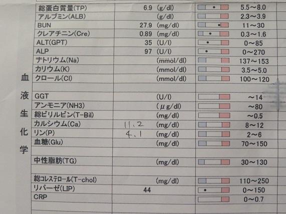 7C07 血液検査 1216